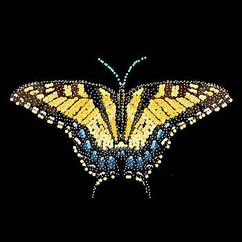 Tiger Swallowtail Butterfly Bedazzled by R  Allen Swezey
