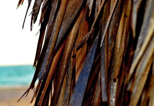 Tiki Hut  by Tara Miller