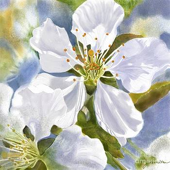 Time To Blossom by Joan A Hamilton