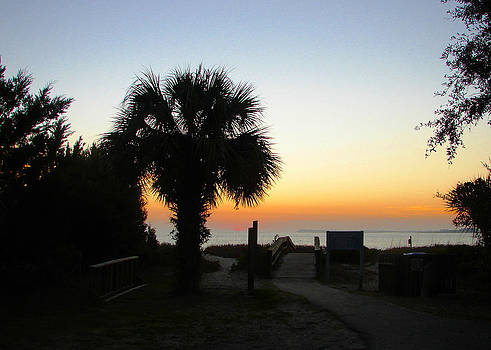 South Carolina Edisto Beach by Ella Char