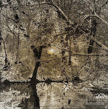 Time V by Yanni Theodorou