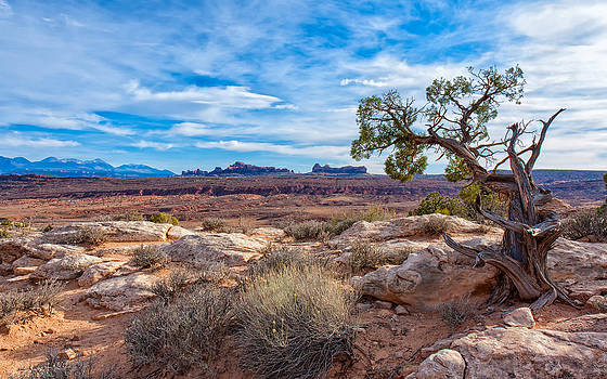 Timeless Arches National Park by John M Bailey
