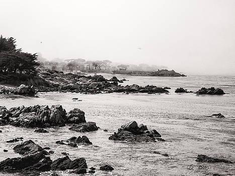 Timeless Coast by Chris Fieldhouse