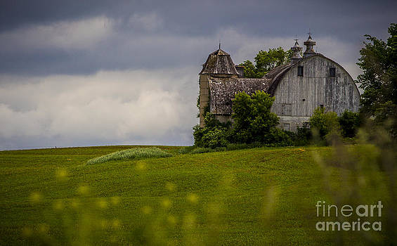 Timeless Country by Kim Kruger