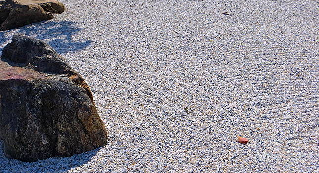 Timeless Zen by Joy Hardee