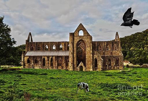 Tintern Abbey Pastoral Scene by Skye Ryan-Evans