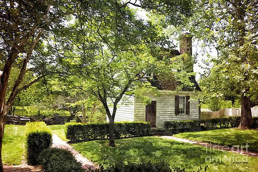 Shari Nees - Tiny Cottage