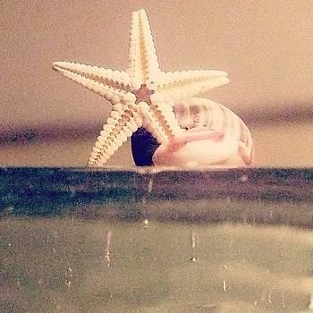 Tiny by Marigan O'Malley-Posada