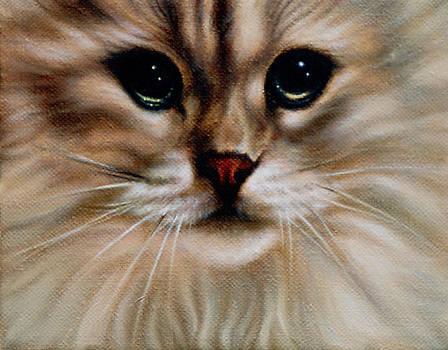 Tiny Tiger by Mary Elizabeth White