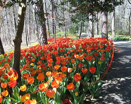 Tiptoe Through The Tulips by Mary Ann Southern
