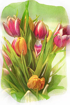 'Tis the Season For Tulips by Michelle Gross