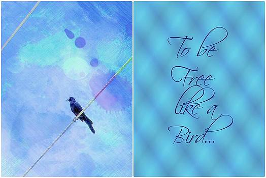 To be free like a Bird by Cathie Tyler