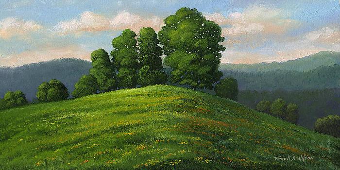 Frank Wilson - Toboggan Hill
