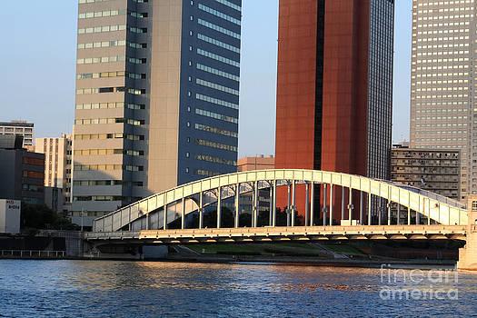 Danielle Groenen - Tokyo Bridge