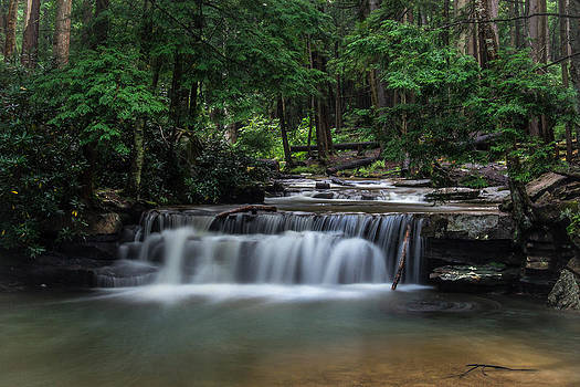 Tolliver Falls by Anthony Thomas