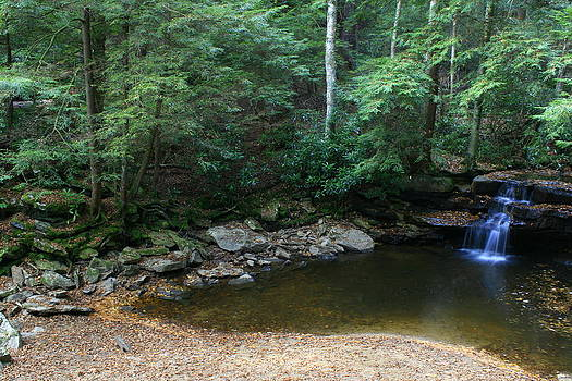 Matthew Winn - Tolliver Falls in Summer