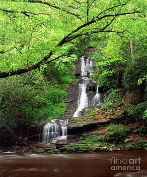Tom Branch Falls 2009 by Matthew Turlington
