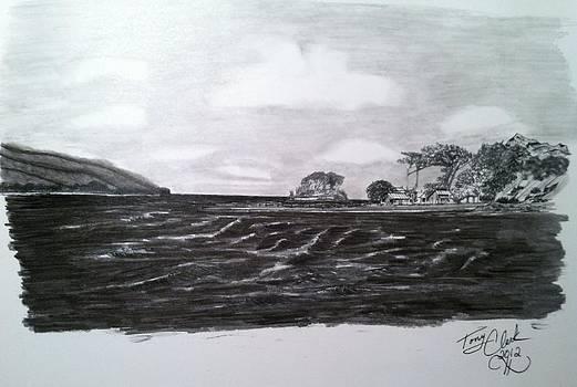 Tomales Bay by Tony Clark