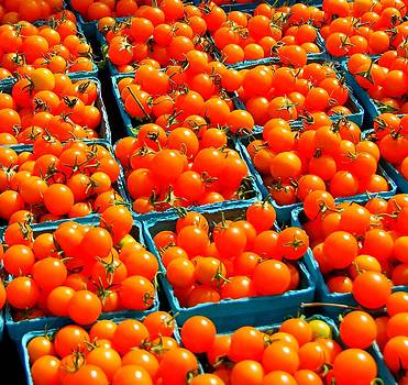 Tomato Squares by Mamie Gunning