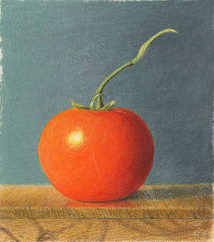 Tomato with Stem by C Sergent Lindsey