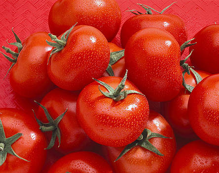 Tomatoes by Mark Langford