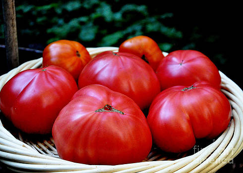 Tomatoes on the Straw Platter by Tanya  Searcy