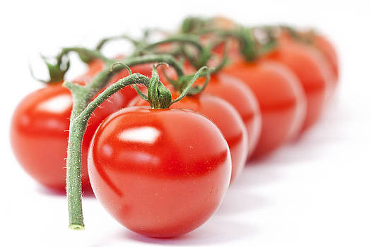 Tomatoes by Paula Connelly