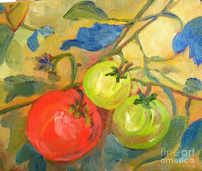 Tomatoes by Susan Hanning