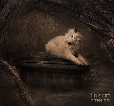 Tomb of the Wolf by Lynn Jackson