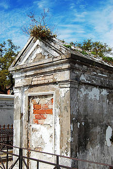Tomb with a nest in New Orleans by Julie VanDore