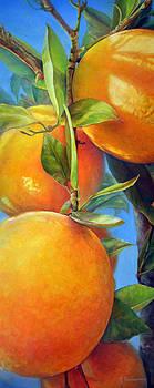 Tombee d Oranges by Muriel Dolemieux