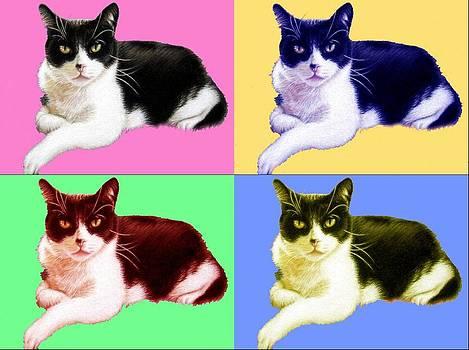 Tomcat PopArt by Nicole Zeug