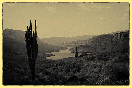 Tonto National Forest by Eugene Dailey