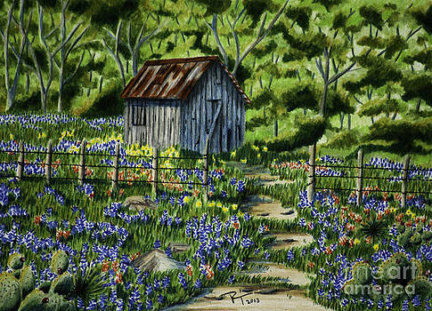 Tool Shed by Robert Thornton