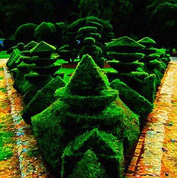 Topiary Art by Andres Ramos