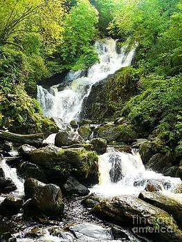 Torc Waterfall Ireland by Gisela Scheffbuch