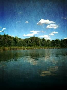 Michelle Calkins - Torch River Reflections