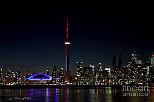 Toronto Skyline at Night by Jale Fancey