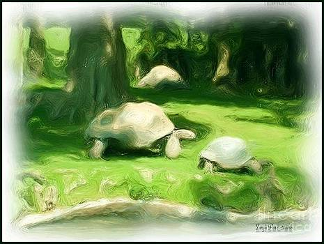 Tortoise Race by Zarya Parx Studio