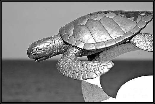 Agus Aldalur - Tortuga
