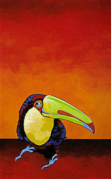 Toucan Bob by Amy McKay