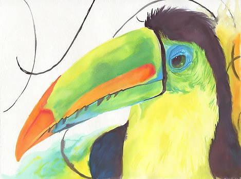 Toucan by Raquel Ventura
