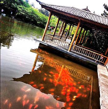 HweeYen Ong - Touch of Zen