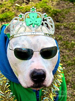 Tough guys wear tiaras by Q's House of Art ArtandFinePhotography