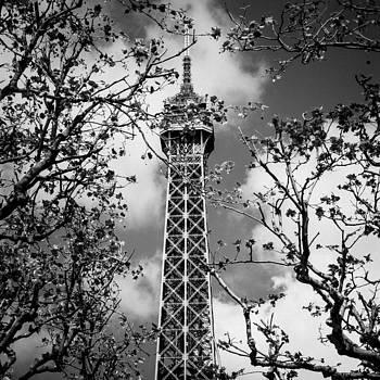Tour Eiffel by Gianfranco Evangelista