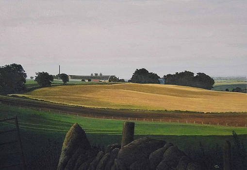 Towards Newseat Of Tolquhon Aberdeenshire by Rodger Insh