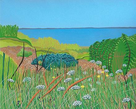 Towards Warden Point by Janet Darley