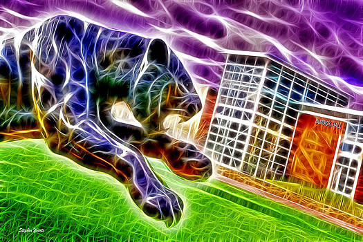 Towson Tigers by Stephen Younts