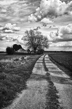 Track to the Farm by Tony Coleby