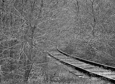 Tracks by Juls Adams